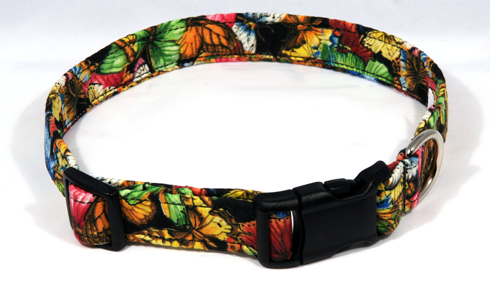 Your Finished Dog Collar