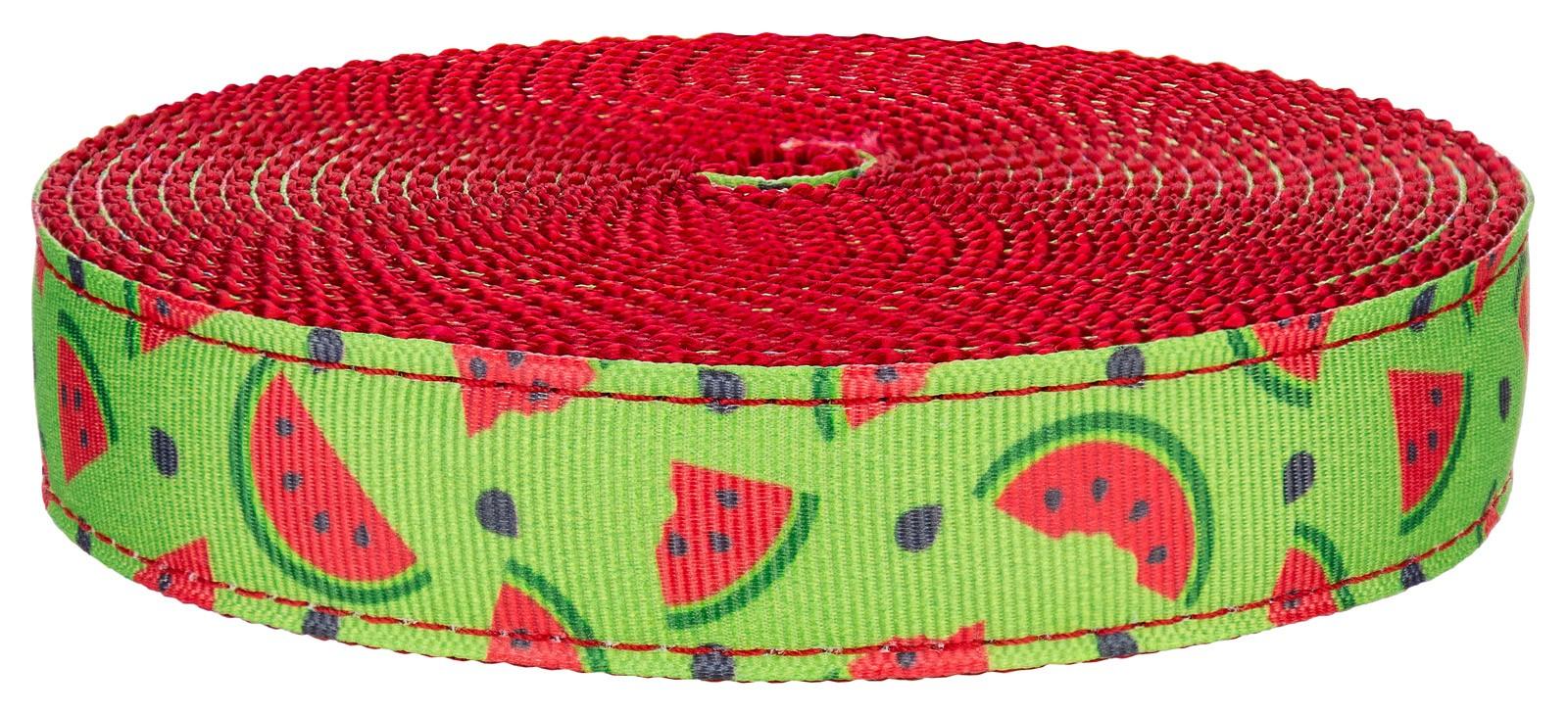 Country Brook Design® Crisp Watermelon Grosgrain Ribbon
