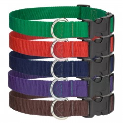 6 - Medium Economy Polypropylene Dog Collars