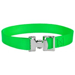 Alligator Clip Nylon Tie Down Straps - Hot Green - 8 Feet