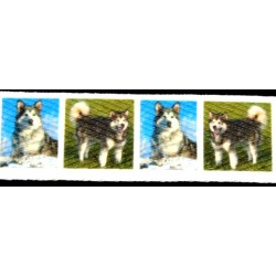 1 Inch Alaskan Malamute Cotton Ribbon - Various Lengths
