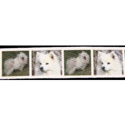 American Eskimo Cotton Ribbon, 1 Yard - Various Widths