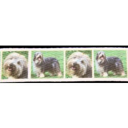 1 Inch Bearded Collie Cotton ribbon - Various Lengths