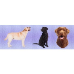 7/8 Inch Labrador Retriever Grosgrain Ribbon Closeout