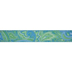 3/4 Inch Green Paisley Ribbon on Ocean Blue Nylon Webbing Closeout