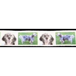 1 Inch English Setter Cotton Ribbon - Various Lengths