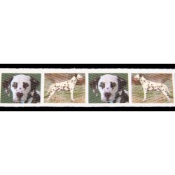 1 Inch Liver Dalmatian Cotton Ribbon - Various Lenghts