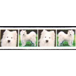 1 Inch Samoyed Cotton Ribbon - Various Lengths