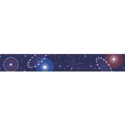 Bursting in Air Grosgrain Ribbon