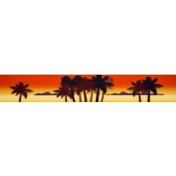 Caribbean Sunset Grosgrain Ribbon