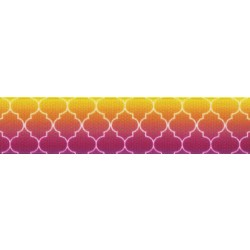 Fabulous Ombre Grosgrain Ribbon