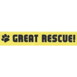 7/8 Inch Great Rescue Grosgrain Ribbon Closeout, 10 Yards