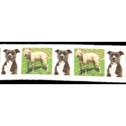 1 Inch Pit Bull Cotton Ribbon - Various Lengths