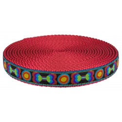 3/4 Inch Funkadelic Bones Ribbon on Red Nylon Webbing Closeout