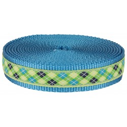 1 Inch Lime Green and Blue Argyle Ribbon on Ice Blue Nylon Webbing Closeout