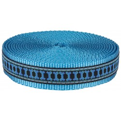 1 Inch Illusion Bone Ribbon on Ice Blue Nylon Webbing Closeout