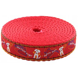 3/4 Inch My Little Angel/Devil Ribbon on Red Nylon Webbing Closeout