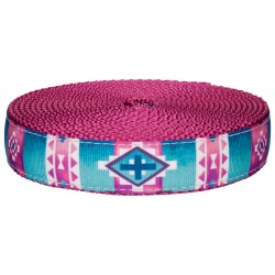 1 Inch Albuquerque on Rose Nylon Webbing