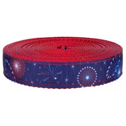 1 Inch Bursting in Air on Red Nylon Webbing