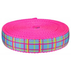 1 Inch Spring Blue Plaid on Hot Pink Nylon Webbing