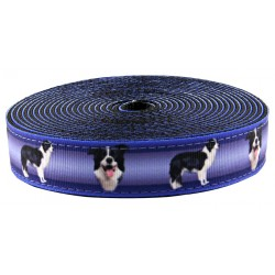 1 Inch Border Collie Ribbon on Black Nylon Webbing