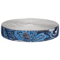 3/4 Inch Blue Paisley on Silver Nylon Webbing