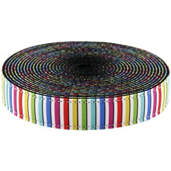 3/4 Inch Rainbow Cabana Stripes Ribbon on Black Nylon Webbing