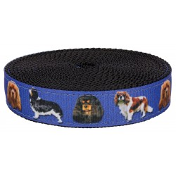 1 Inch King Charles Spaniel on Black Nylon Webbing