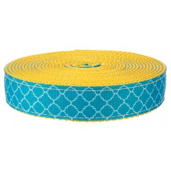 1 Inch Classy Chic on Gold Nylon Webbing Closeout