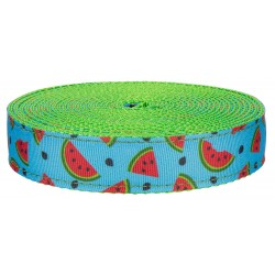 1 Inch Cool Watermelon on Hot Lime Green Nylon Webbing