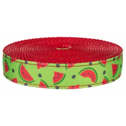 1 Inch Crisp Watermelon on Red Nylon Webbing