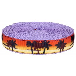 1 Inch Caribbean Sunset on Lavender Nylon Webbing Closeout