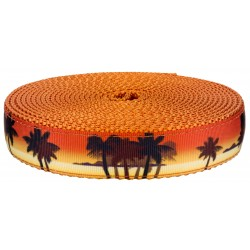 3/4 Inch Caribbean Sunset on Orange Nylon Webbing