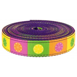 3/4 Inch Citrus Blocks on Purple Nylon Webbing, 20 Yards