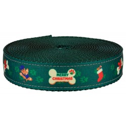 3/4 Inch Doggy Christmas on Green Nylon Webbing