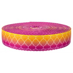 1 Inch Fabulous Ombre on Rose Nylon Webbing