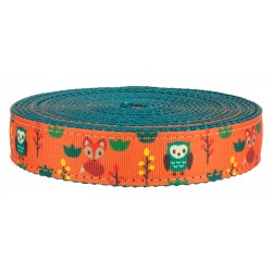 1 Inch Foxy Friends on Teal Nylon Webbing