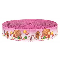 1 Inch Gingerbread Land on Rose Nylon Webbing Closeout, 1 Yard