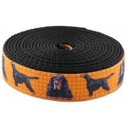1 Inch Gordon Setter Ribbon on Black Nylon Webbing