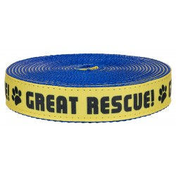 1 Inch Great Rescue on Royal Blue Nylon Webbing Closeout, 1 Yard