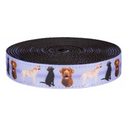1 Inch Labrador Retriever on Black Nylon Webbing