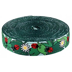 1 Inch Ladybugs Picnic Ribbon on Green Nylon Webbing