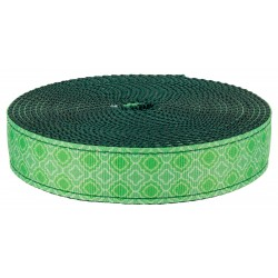 1 Inch Minty Chic on Green Nylon Webbing