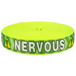 1 Inch Green Nervous on Hot Yellow Nylon Webbing