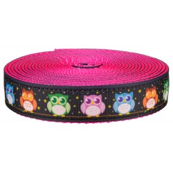 Country Brook Design® 1 Inch Nite Owls on Hot Pink Nylon Webbing