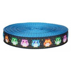 1 Inch Nite Owls on Ice Blue Nylon Webbing