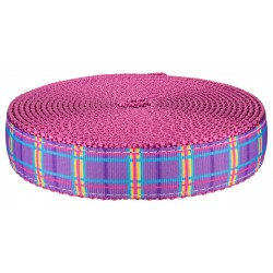 1 Inch Spring Purple Plaid on Rose Nylon Webbing