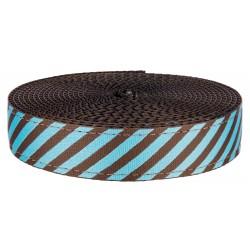 1 Inch Robin's Egg Stripes on Black Nylon Webbing