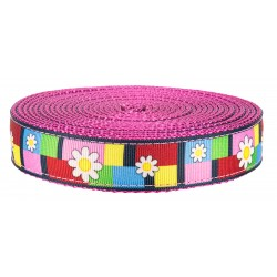 1 Inch Spring Daisies on Rose Nylon Webbing