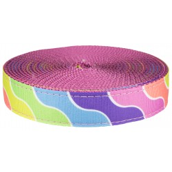 1 Inch Spring Kaleidoscope Ribbon on Rose Nylon Webbing